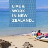 Wellington Accounting Jobs